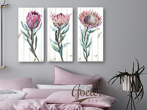 Protea Water Colours