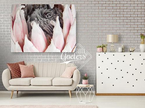 Perspex Protea Head Grey and Black