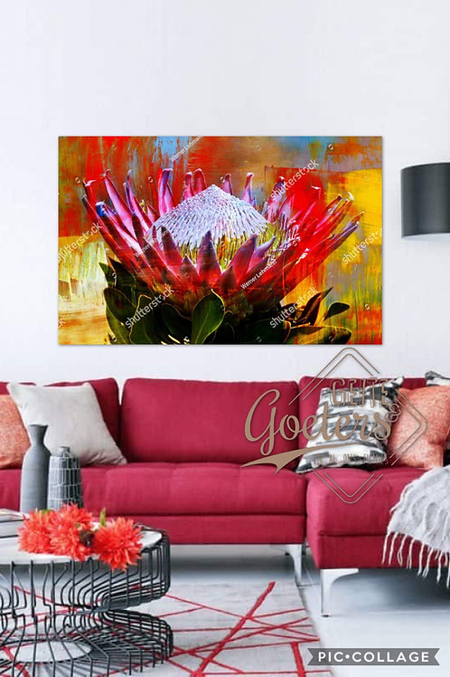 2020 Rustic Protea Abstract Colours