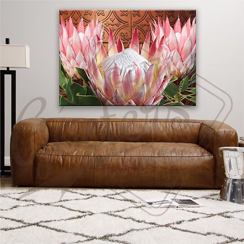 COPPER Protea Bright Pink