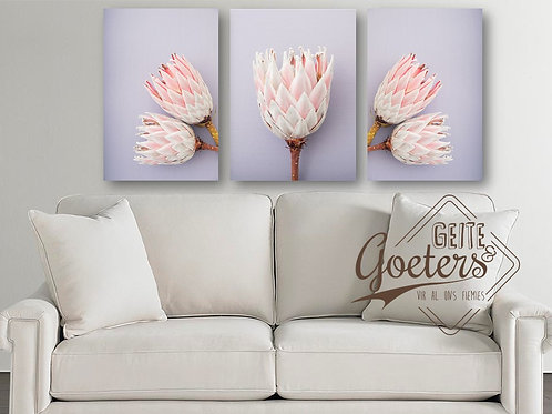 Set of 3 Protea Light Purple