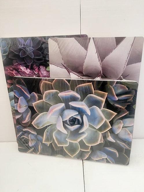 Placemats: Succulent