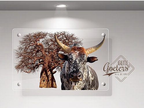 WHOLESALE: Perspex Nguni Colours with brown tree