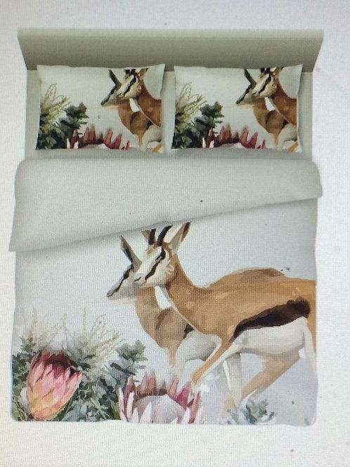 Bedding Protea Bokkies