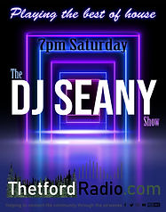 The DJ Seany Show.jpg