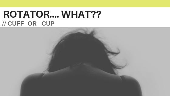 shoulder impingement and rotator cuff injuries