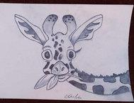 APD Drawing Giraffe.jpg