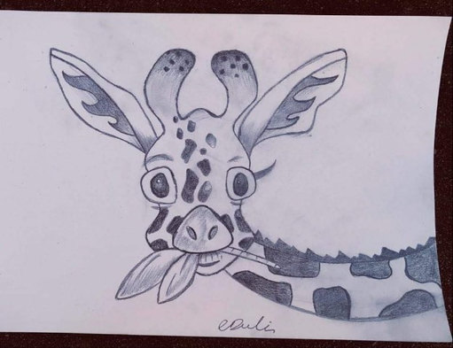 APD Drawing Giraffe.jpg