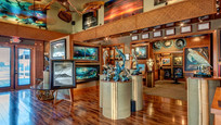 wyland art gallery