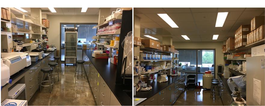 Lim Lab on Aug 2017