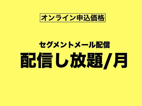 【オンライン申込専用】セグメントメール配信し放題
