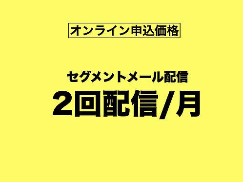 【オンライン申込専用】セグメントメール月2回配信