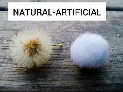 Natural - Artificial (Naia Sanchez, 7anys )