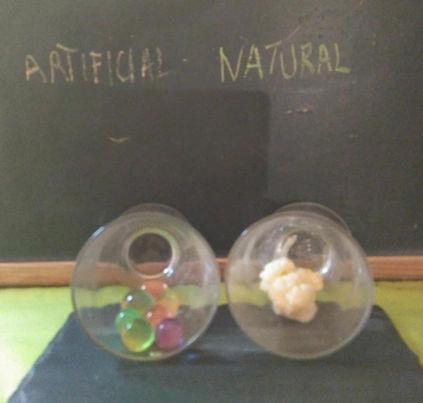 Artificial - Natural (Pau B.B. 10 anys).
