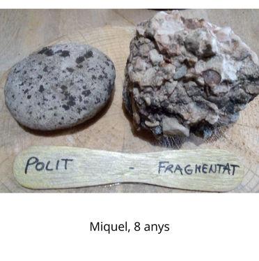 Polit - Fragmentat (Miquel 8 anys)