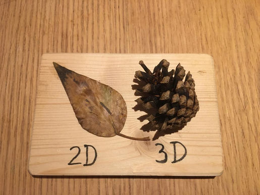 2D - 3D (Lucca Ulitzka 9 anys)