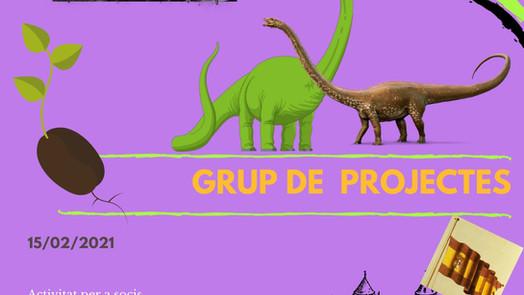 Trobada del Grup de Projectes Online - Febrer 2021