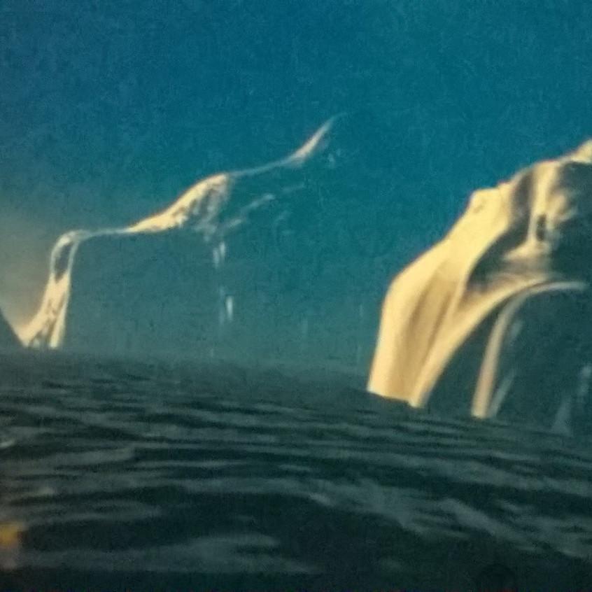 Nit_Titanic12
