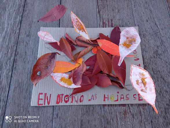 En otoño las hojas se van de vacaciones (Yulia, 11 anys)