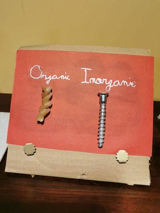 Orgànic - Inorgànic (Teo 13, Nil 11, Cedric 8)
