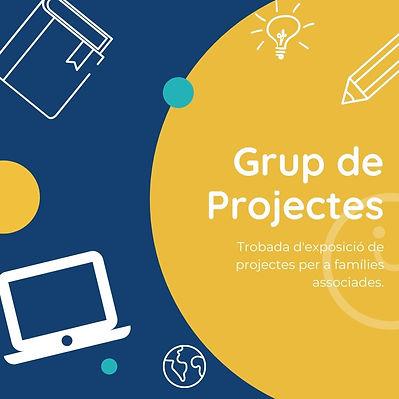 Grup de Projectes.jpg