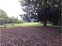 チェスター・グロヴィナー公園