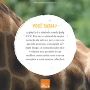 Você sabia a relação entre CNV e a Girafa?