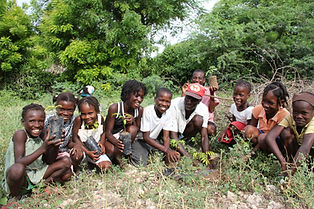 One Tree Planted-3.jpg