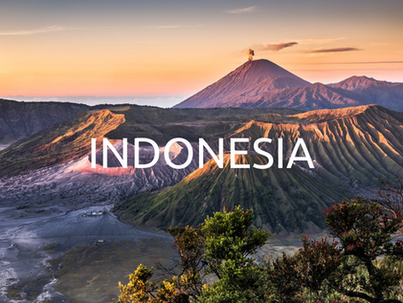 Indonesian Reforestation Project