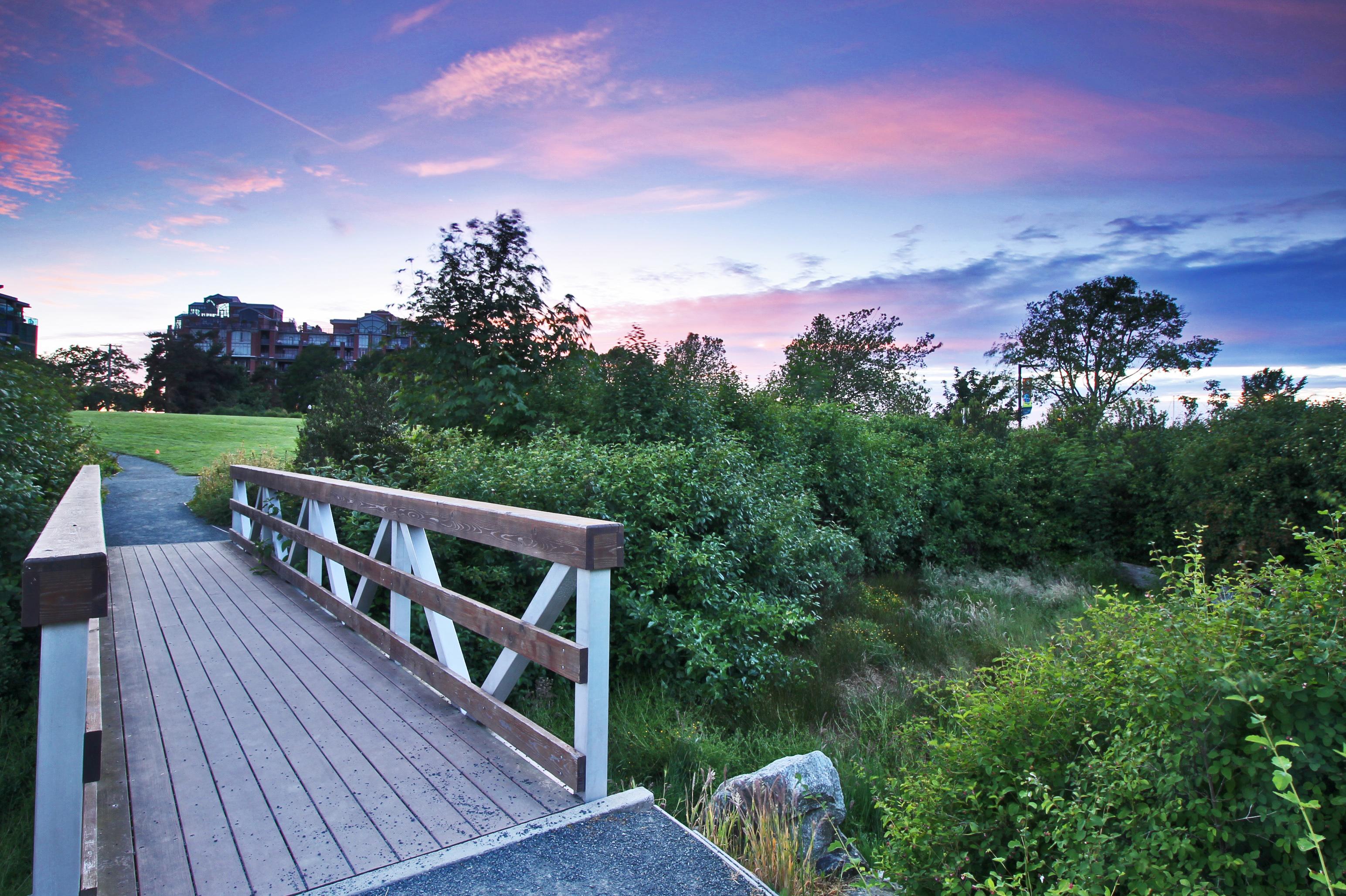 evening-bridgejpg