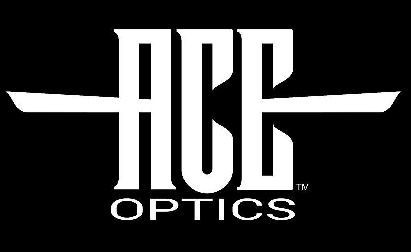 Ace Wordmark White.jpg