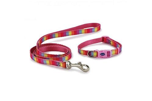 Small Bite Rainbow Collar & Lead Set
