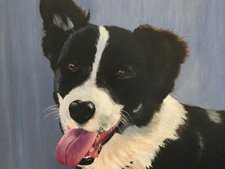 Joy Connell Pet Portraits …
