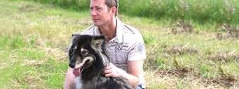 The Icing on the Cake - What Traditional Dog Training is Missing