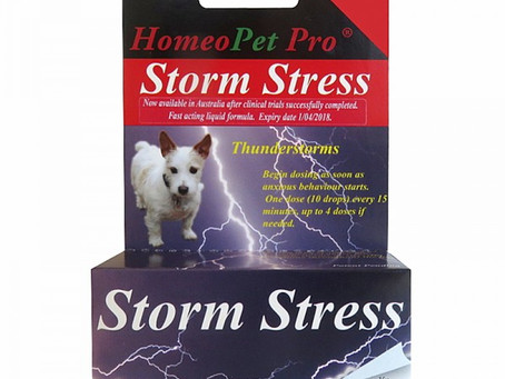 Does your Dog suffer from Storm Anxiety?