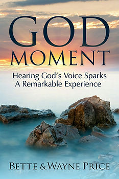A fulfilled vision sparks this Christian testimony of hearing God's voice. True testimonies of miracle healings abound in this book. Godly miracles of healing a mental illness called Bipolar Disorder and its devastating symptoms. Hearing the voice of God is prevalent throughout these testimonies even when disbelief and fear appeared. A Christian story full of hope and encouragement.