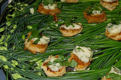 Salmon cakes with tarragon sauce