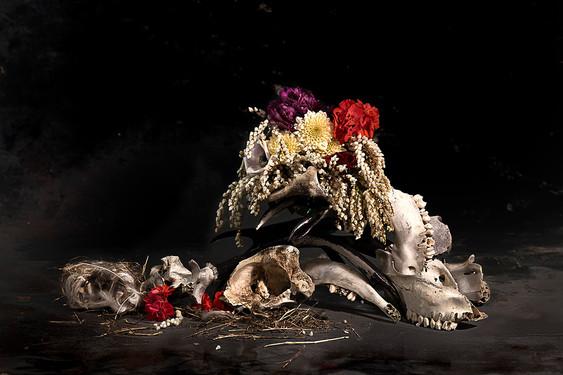 Bones.Dress it all what you want