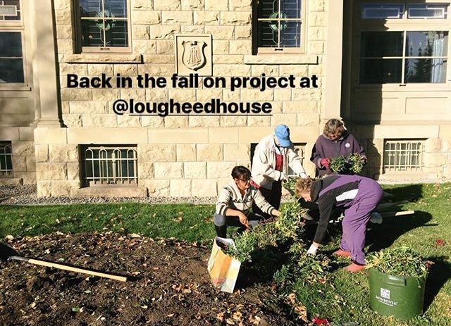 Lougheed House garden project