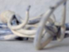 Tentaculos1Detalle.jpg