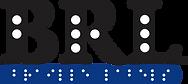 Braille Logo