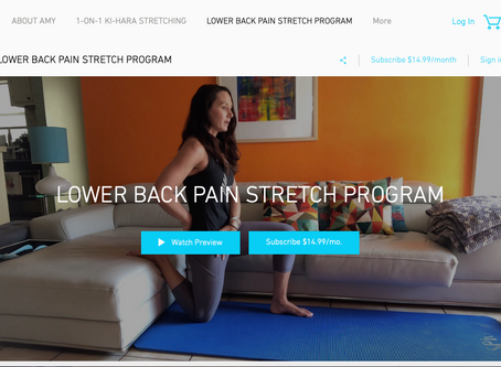 Lower back stretches...why the MastroStretch Lower Back Stretch program is effective.