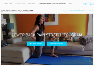 Lower back pain stretches 1