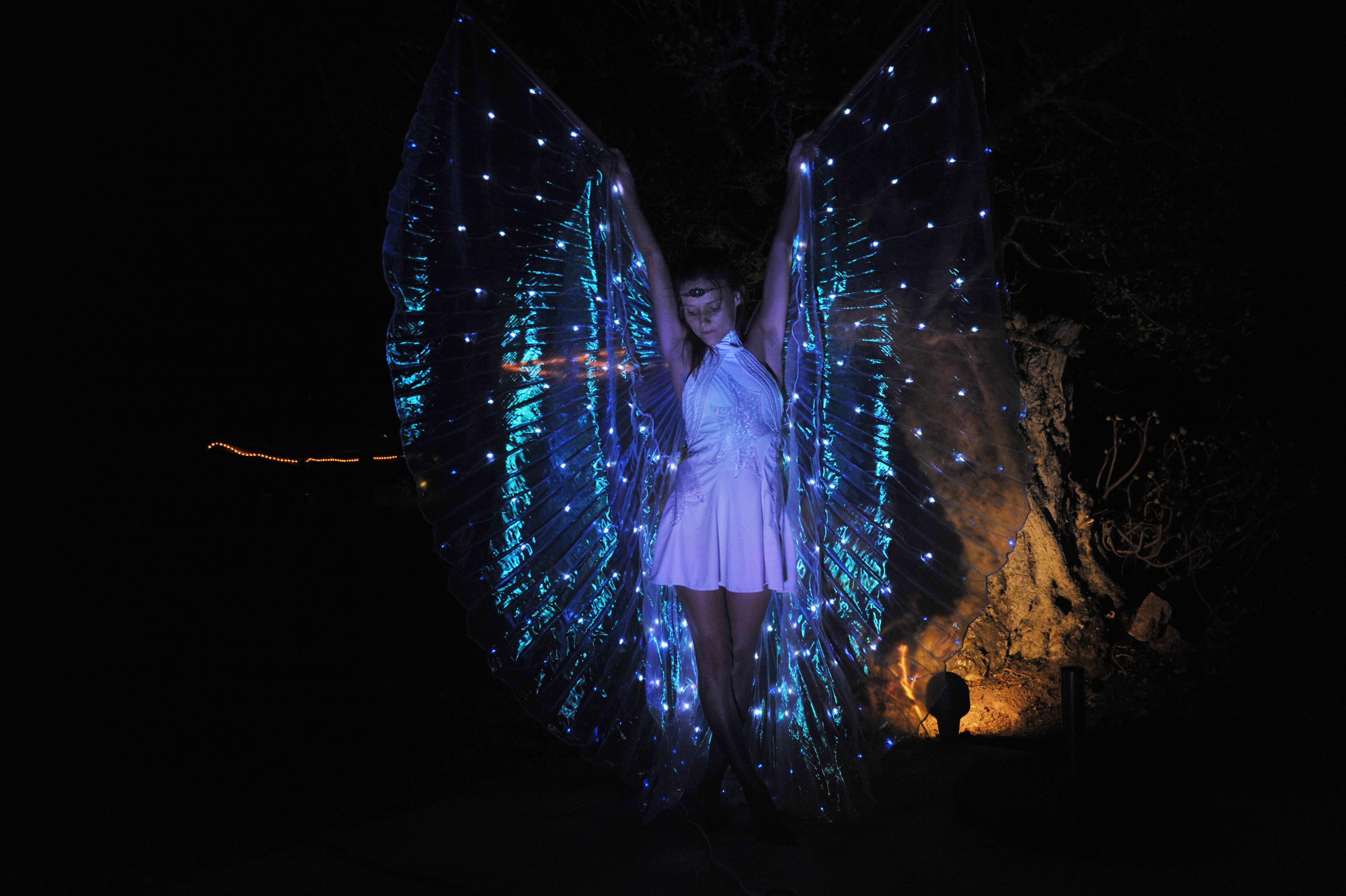 Fairy Light Show