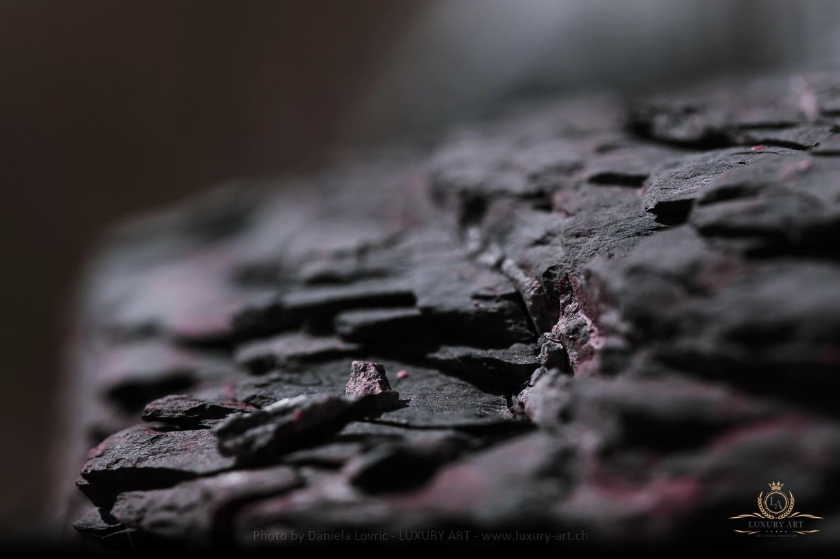 Fotoshooting - Daniela Lovric