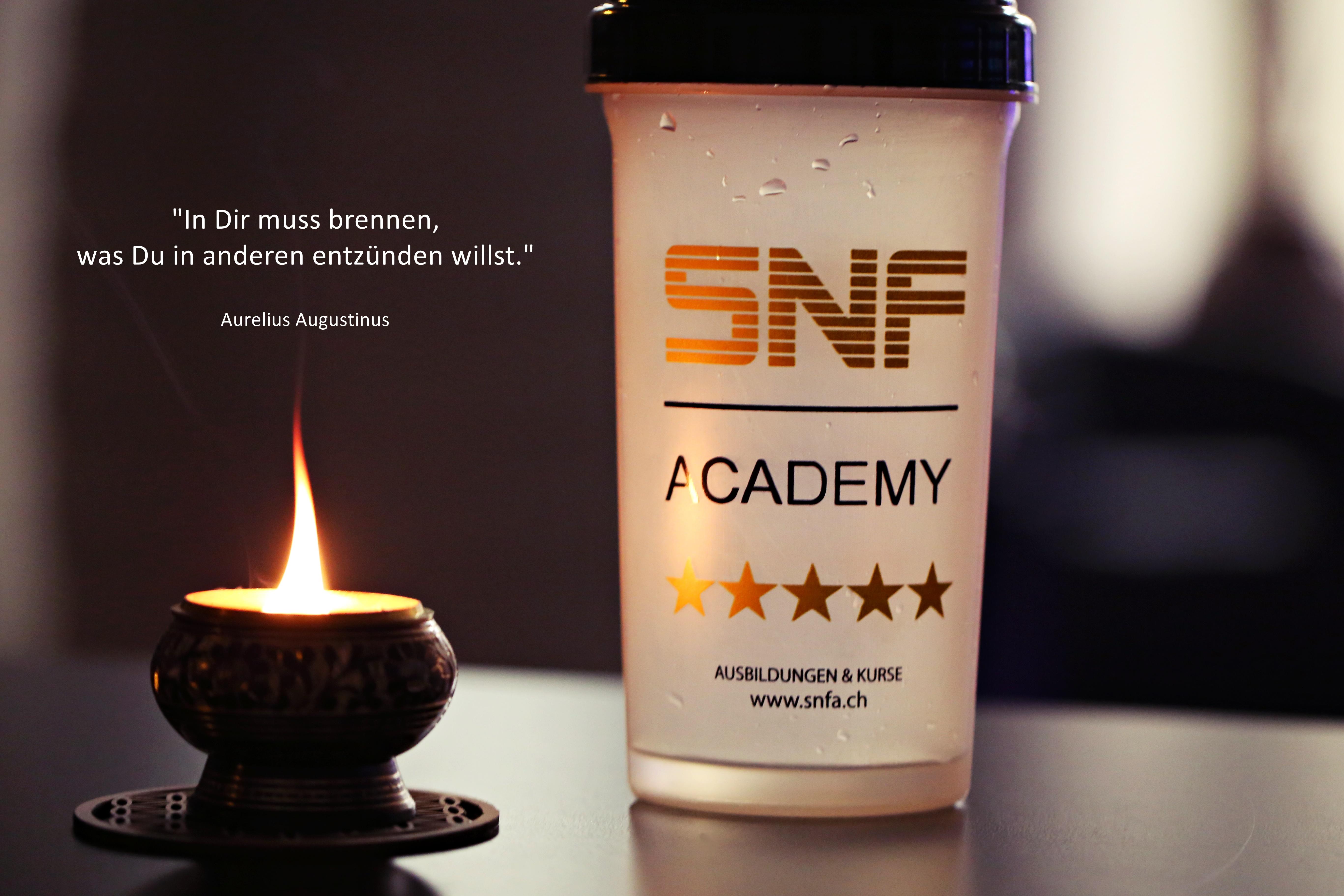 snfa academy - www.snfa.ch