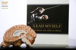 Funktion Gehirn