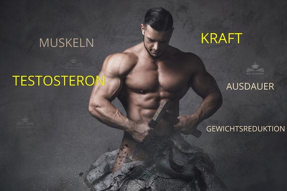 testosteron_fitness_snfacademy.jpg