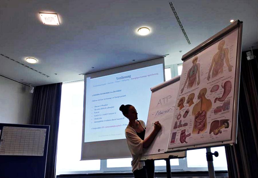 seminar fitness schweiz