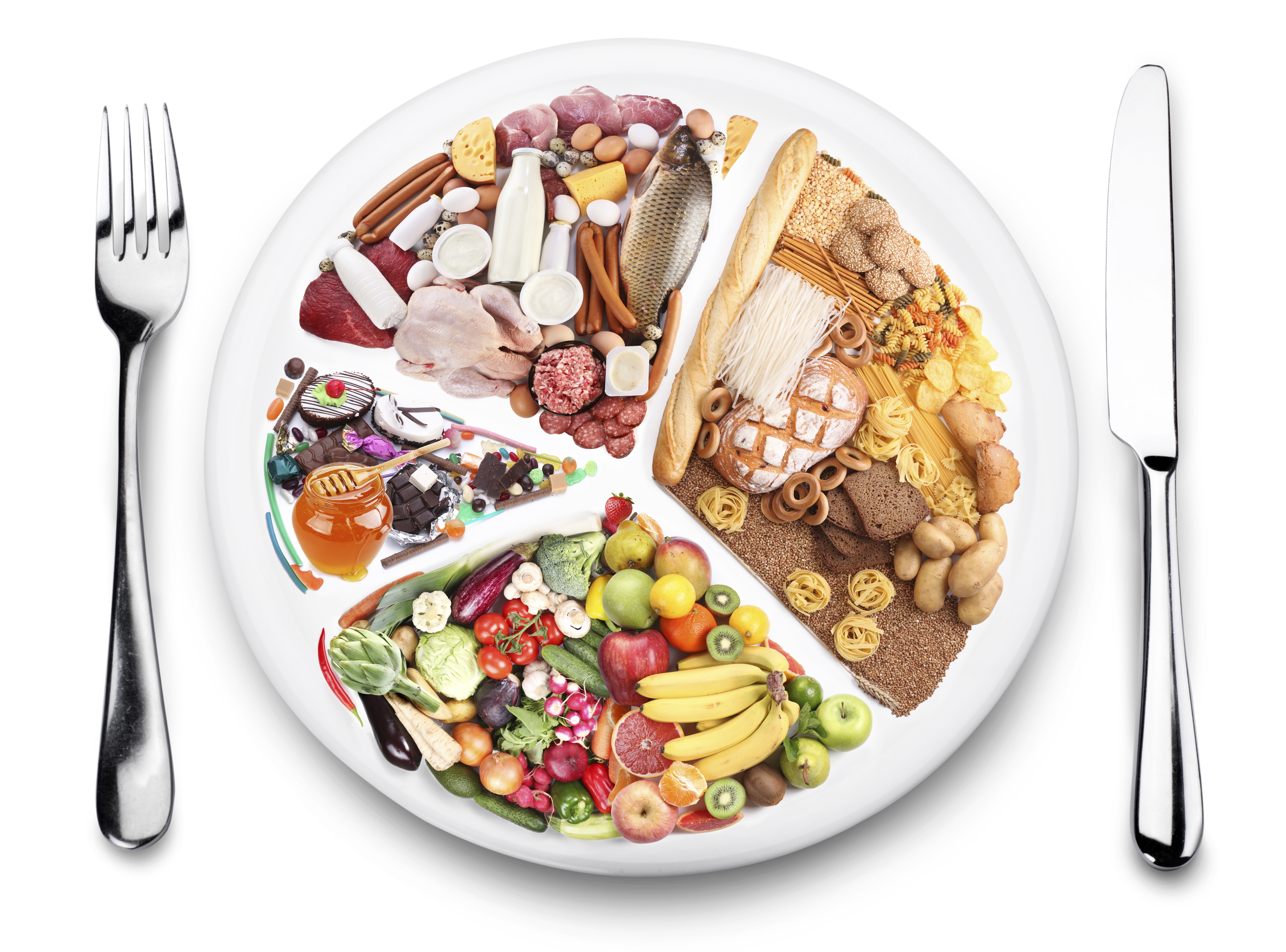 Tagesseminar Ernährung Schweiz